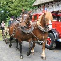 Feuerwehrfest-2007_32