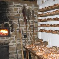Brot-backen